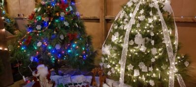 Tannenbaum trees decorated in blue and white