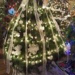 lace lodging tree