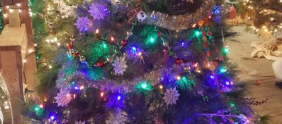 Zuber's tree decorated with blue lights